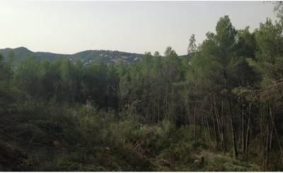 Prodej Pozemek Palma de Mallorca