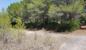 Prodej Pozemek Santa Ponsa