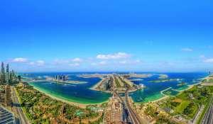 Pronájem Byt Dubai Marina