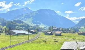 Pronájem Byt Gstaad