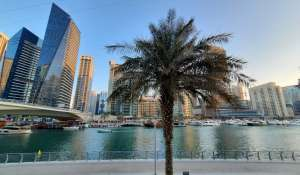 Pronájem Vila Dubai Marina